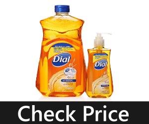 Dial Gold Antibacterial Liquid Soap